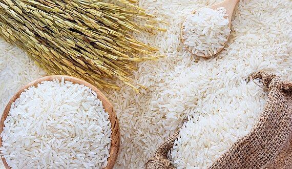 Gao Vietnam Vietnamese Rice